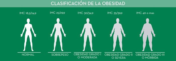 Porcentaje de grasa aceptable adulto