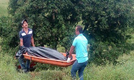 Encuentran más cadáveres en Veracruz