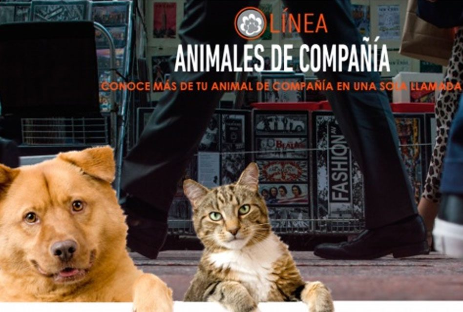 Continúa LOCATEL con registro de animales de compañía