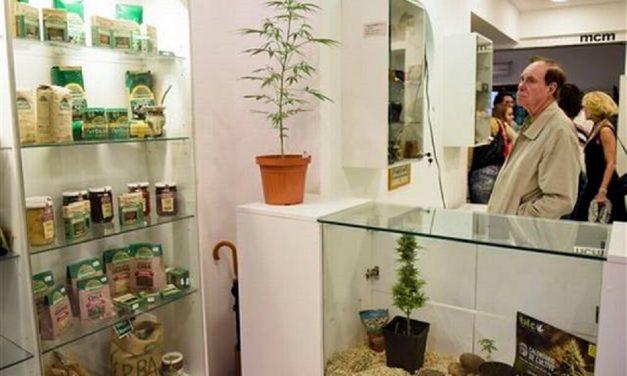 Inauguran museo del cannabis