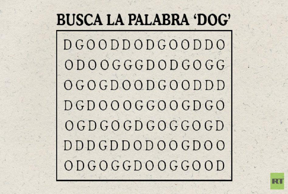 """Millones buscan la palabra """"DOG"""" en este rompecabezas, pero pocos la encuentran ¡Anímate!"""