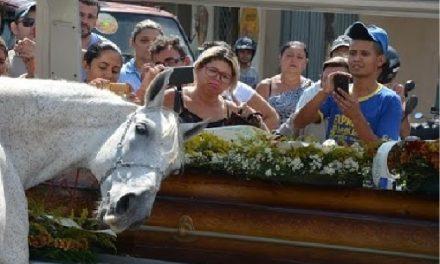 La triste despedida de un caballo en funeral de su jinete conmueve al mundo
