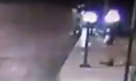 Nuevo Video que muestra el accidente del BMW en Reforma