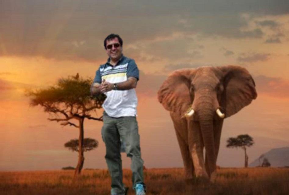 Cazador argentino muere luego de ser aplastado por un elefante en Namibia